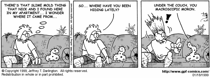 [Comic for Monday, January 18, 1999]