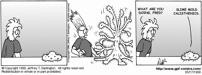 [Comic for Monday, May 17, 1999]