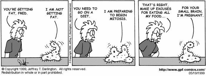 [Comic for Wednesday, May 19, 1999]